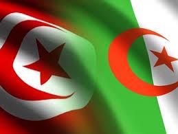 الحدود التونسية الجزائرية: نقل 10 وحدات قتالية من الجيش الجزائري