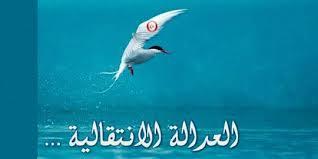 """عمر الصفراوي: بعض فصول قانون العدالة الانتقالية """"انتقامي وانتقائي"""""""