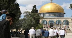 مجموعات صهيونية تقتحم المسجد الأقصى بحماية شرطة الاحتلال