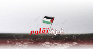 غزّة: رغم الجراح مازال أمل الحياة قائما.. 1886 شهيدا وولادة 4500 طفلا خلال فترة العدوان الصهيوني