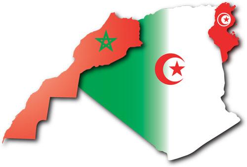 هذا ترتيب تونس والجزائر والمغرب ضمن البلدان الفاشلة
