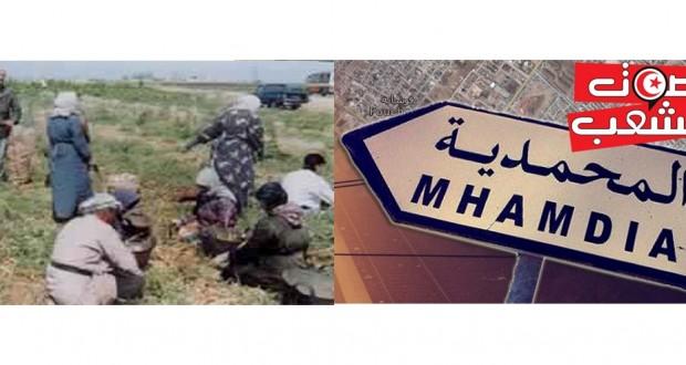 بن عروس:  المحمدية // عمّال ضيعة الخير يصرّون على تحقيق مطلب الإدماج