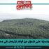 الغابات التّونسيّة: متى تتحوّل من أوكار للإرهاب إلى مصادر للتّنمية الحقيقيّة