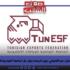 إرضاء لابنه وتعيين مقرّب من الغنوشي، وزير الرياضة يقرّر حلّ الجامعة التونسية للرياضات الالكترونية