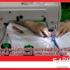 في بلاغ مشترك: وزارتا الصحة والصناعة تعلن الترخيص للمصنّعين والحرفيين لتصنيع كمّامات واقية للاستعمال غير الطبّي