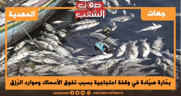 بحّارة صيّادة في وقفة احتجاجية بسبب نفوق الأسماك وموارد الرّزق المهدّدة