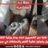 اعتصام 33 شابا من القصرین تحت جدار وزارة التكوين المهني والتشغيل يتجاوز عشرة أشهر والسلطات في سبات عميق