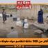 أكثر من 500 عائلة تتقاسم مياه ملوثة مع الحيوانات