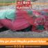 سيدي بوزيد: سيارة تصطدم بكريطة تسفر عن وفاة أم وابنتها