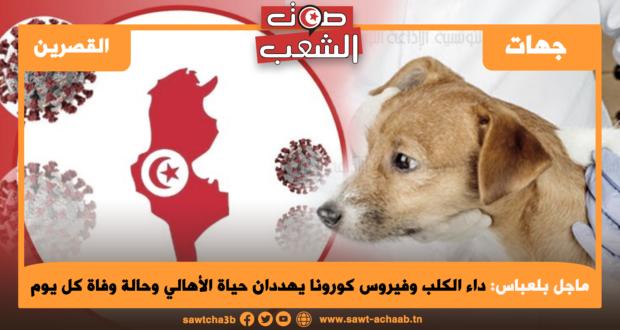 ماجل بلعباس: داء الكلب وفيروس كورونا يهددان حياة الأهالي وحالة وفاة كل يوم
